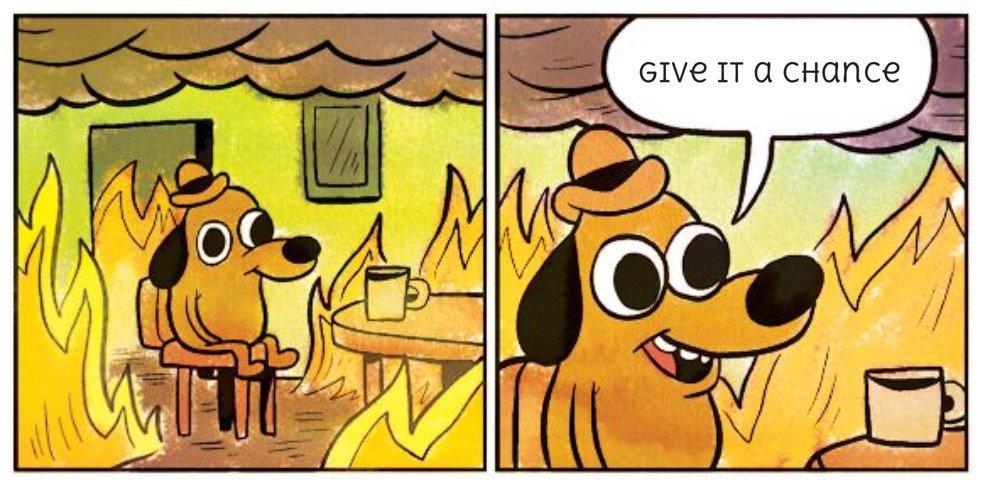 dog fire