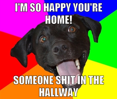 dog shit hallway